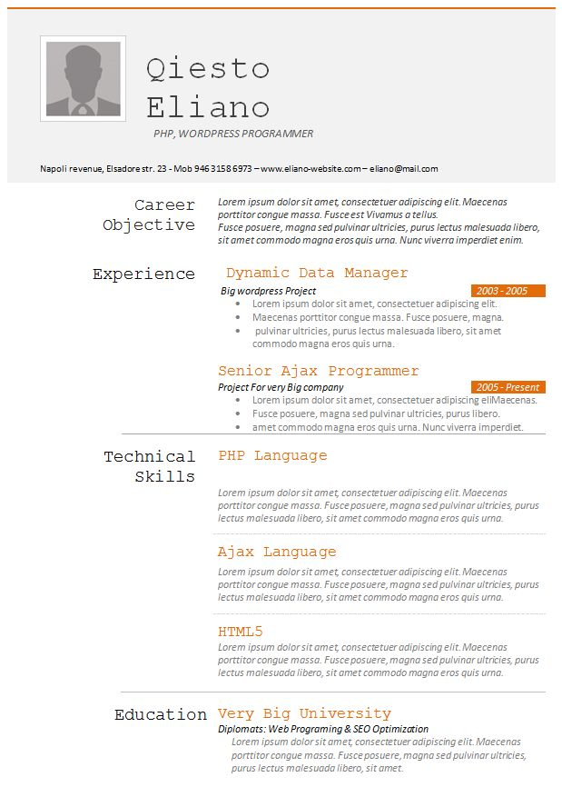 8 best WinWord resume templates images on Pinterest Resume - senior programmer job description