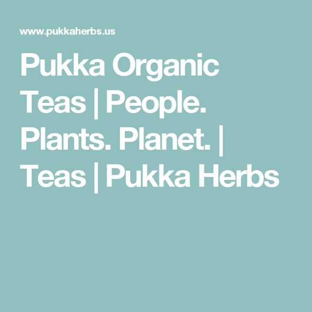 Pukka Organic Teas | People. Plants. Planet. | Teas | Pukka Herbs