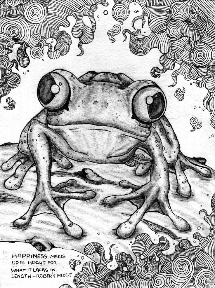 Realistic Tree Frog Drawings 940 best images...