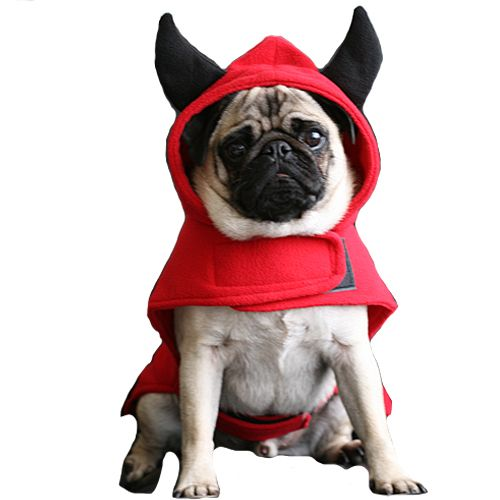 Dog Fancy Dress costumes for 2015 include this Dog Devil Costume, easy to  put on, warm and will fit all sizes from small dogs to very large dogs such  asa