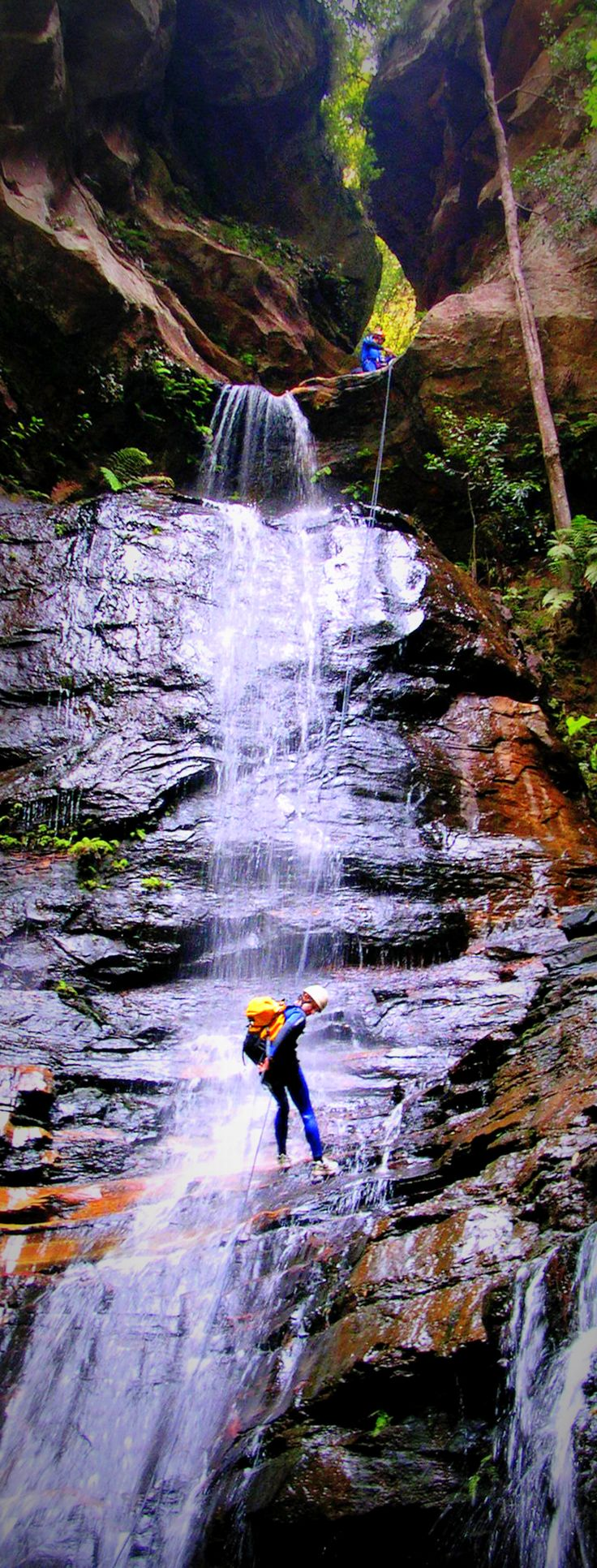 Abseiling in the Blue Mountains, Australia