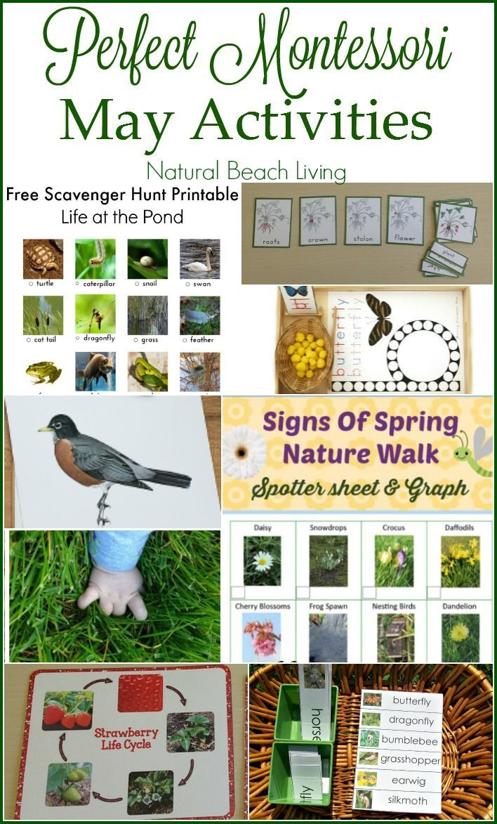 may preschool themes 1000 images about seasonal may s day 236