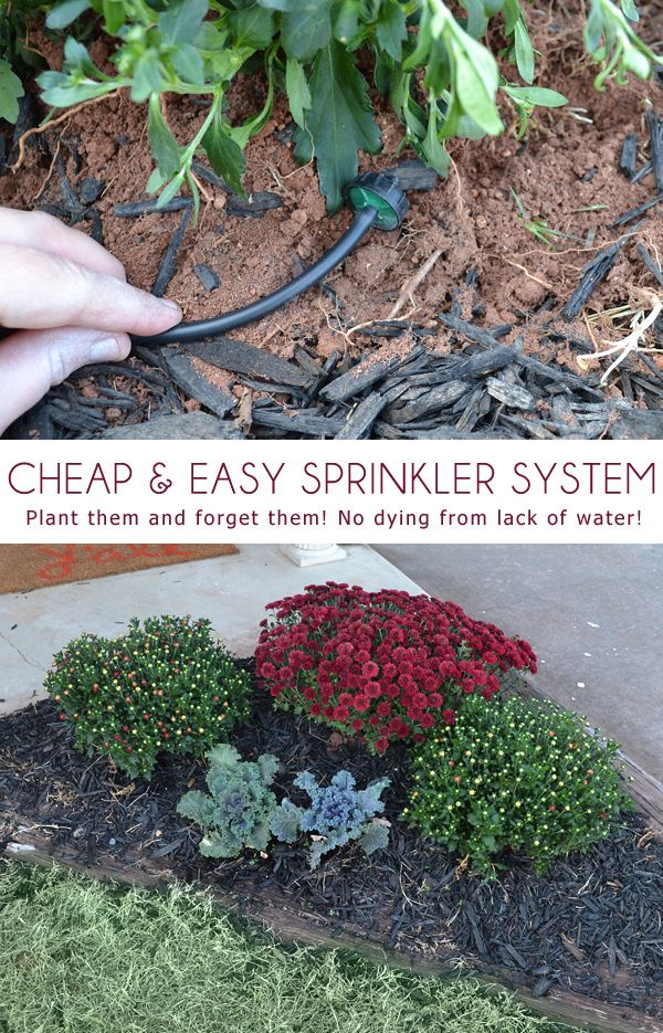 how to find lawn sprinkler hear