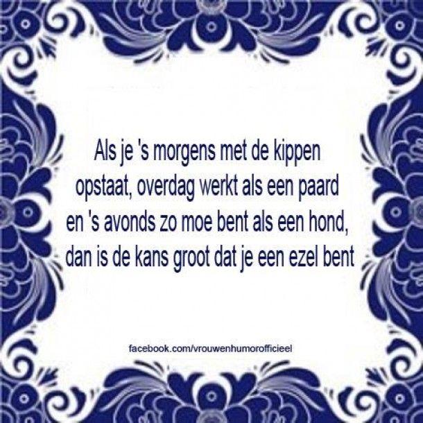 wijze zinnen | grappige tekst haha.... Door femke2000