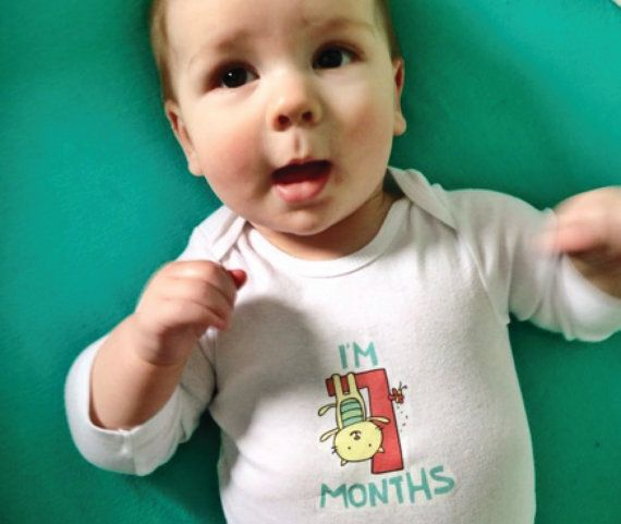 Illustrated Cat Theme Monthly Iron-ons for Baby's by leahmcr8