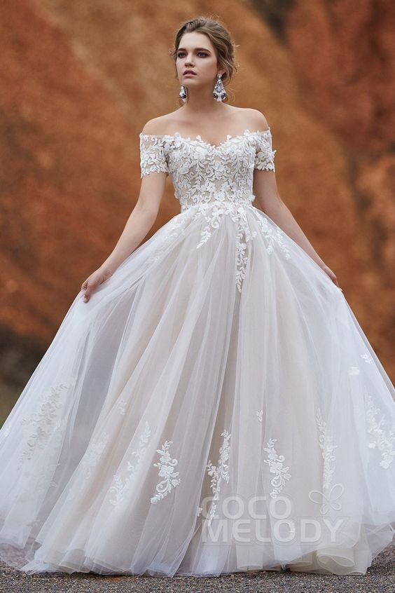 A-Line Sweep-Brush Train Tulle Gothic Wedding Dress LD5830
