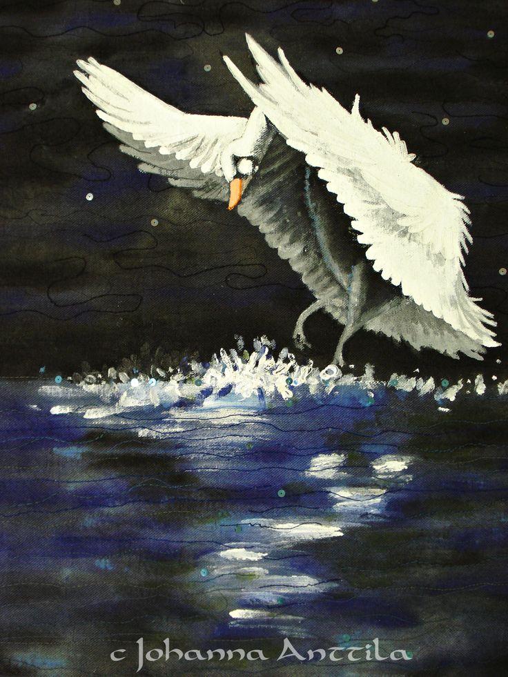Joutsenlammella. A swan lake.