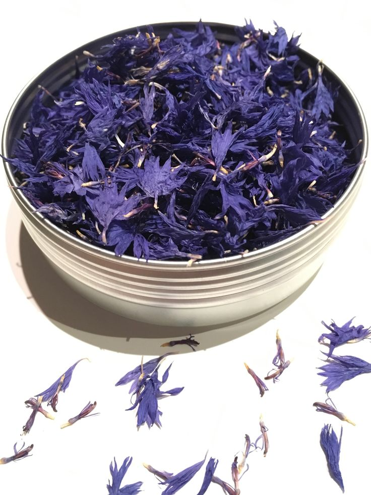 33 best images about dried edible flowers on pinterest