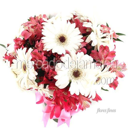Gerberas Blancas Amanecer| Envia Flores