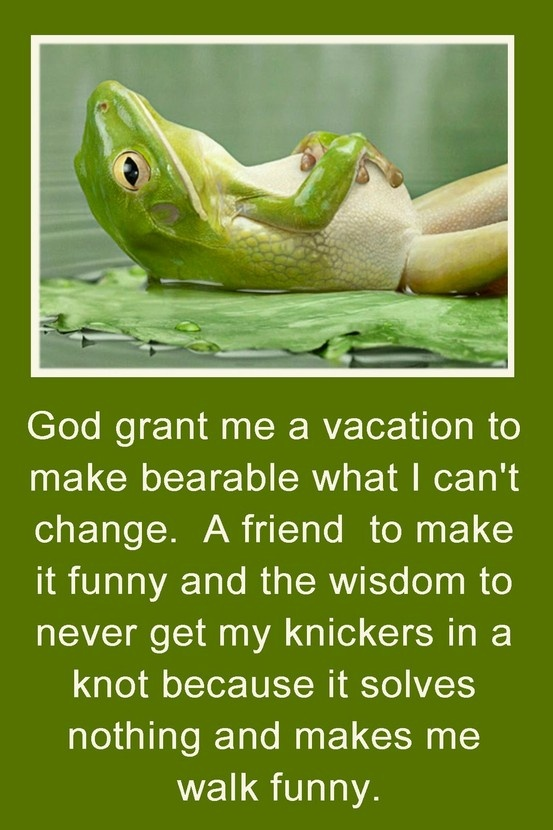 Ha!: Remember This, Need A Vacations, Friends, Inspiration, Quote, New Life, Funny Stuff, Knot, Serenity Prayer