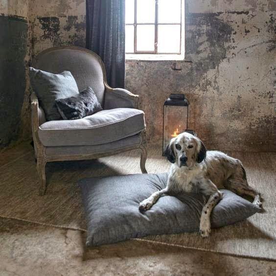 Farm, Rustique, Home and Cottage, Gundog, furniture, interior