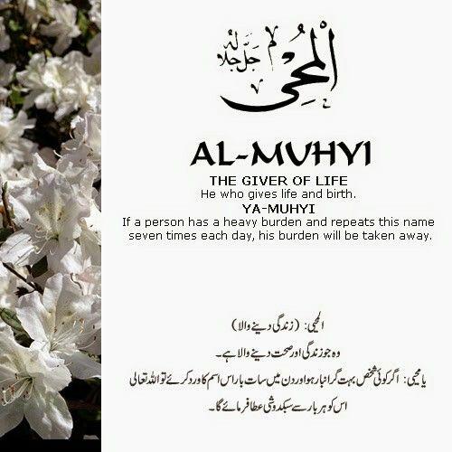 Al Muhyi