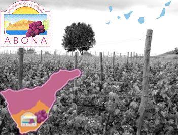 Esta denominación de origen de Abona esta situada en la isla de Santa Cruz de Tenerife, en su vertiente meridional y que van desde el Teide hasta la costa. Las poblaciones que nos encontramos en esta Denominación de Origen Abona y que se extienden por casi toda la isla, son las de Adeje, Arona, Fasnia, Granadilla de abona, San miguel, Vilaflor y Villa de arico.  La D.O. Abona esta legislada oficialmente desde 1996 y tiene su sede en El Poris de Abona, municipio de Arico.