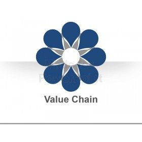 Michael Porter's Value Chain Analysis