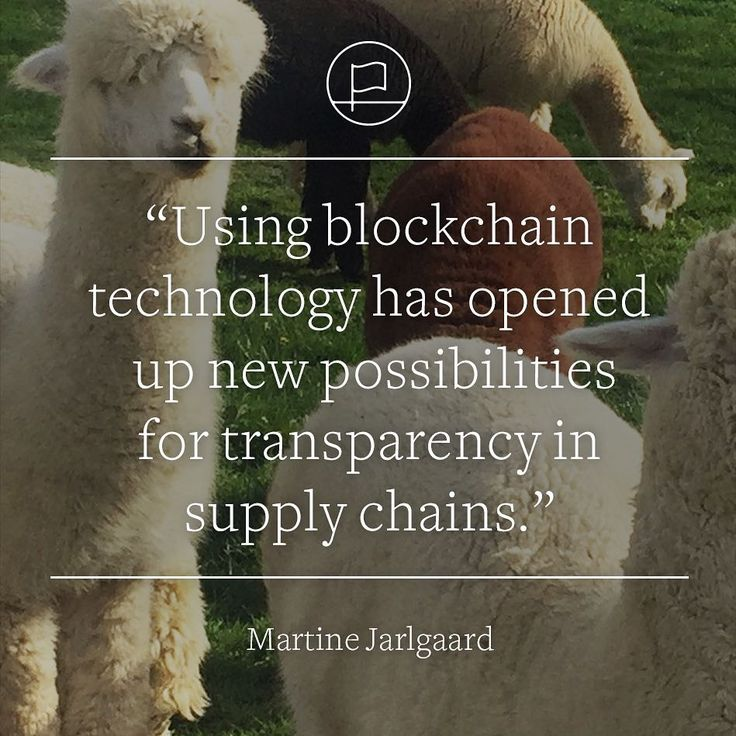 Blockchain to enable transparency in the fashion supply chain - Tech Wire Asia
