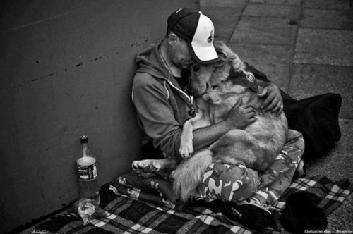 .: True Friendship, Real Love, Dogs, Black White Photography, Man Best Friends, True Love, My Heart, Animal, Role Models