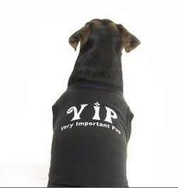 VIP Dog Shirt For the very important Pup!! Made with diamante detailing.