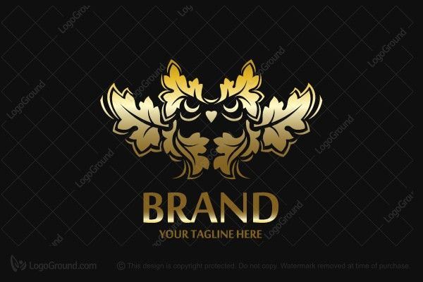 Logo for sale: Golden Owl Logo