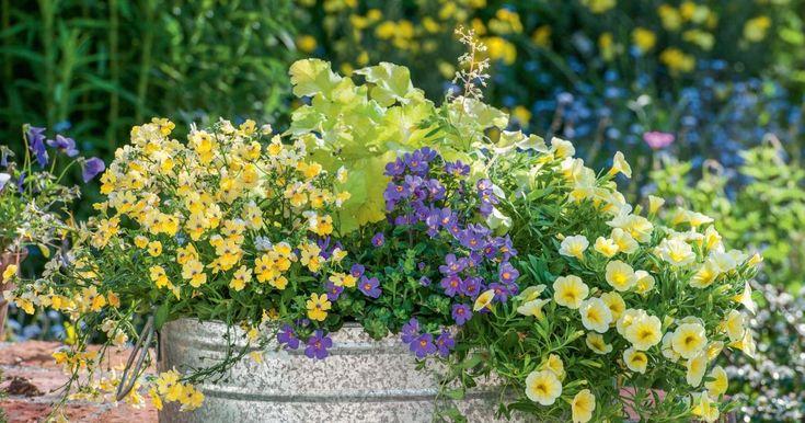 Im Mai beginnt die Pflanzzeit für Sommerblumen. In Töpfen und Schalen aus Korb, Ton oder Zink und kombiniert mit Beet- und Kübelpflanzen entstehen ebenso charmante wie natürliche Blickfänge für Ihren Landhausgarten.
