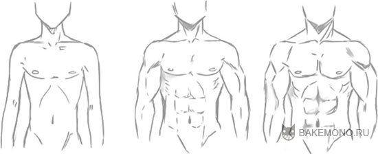 как рисовать аниме мужское тело - Поиск в Google