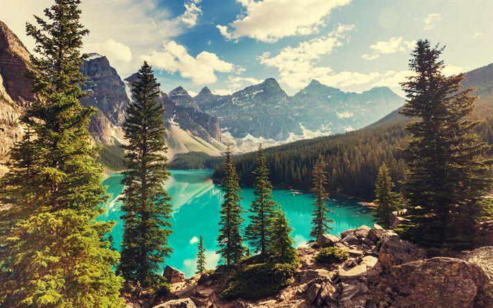 Télécharger fonds d'écran Le Lac Moraine, l'été, le Parc National de Banff, des forêts, des montagnes, Canada