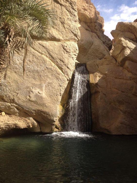 Gabès est située au sud est de la Tunisie, sur la côte méditerranéenne, à 400 km de la Capitale Tunis, 125 km de Tataouine et 100 km de Djerba. C'est la plus grande ville du sud de tunisien après Sfax et est aussi la seule oasis côtière au monde. La région réunit des atouts: la …