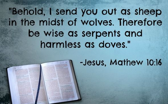 """What is the Real Meaning of the Verse, """"Wise as a Serpent and Harmless as a Dove?"""""""
