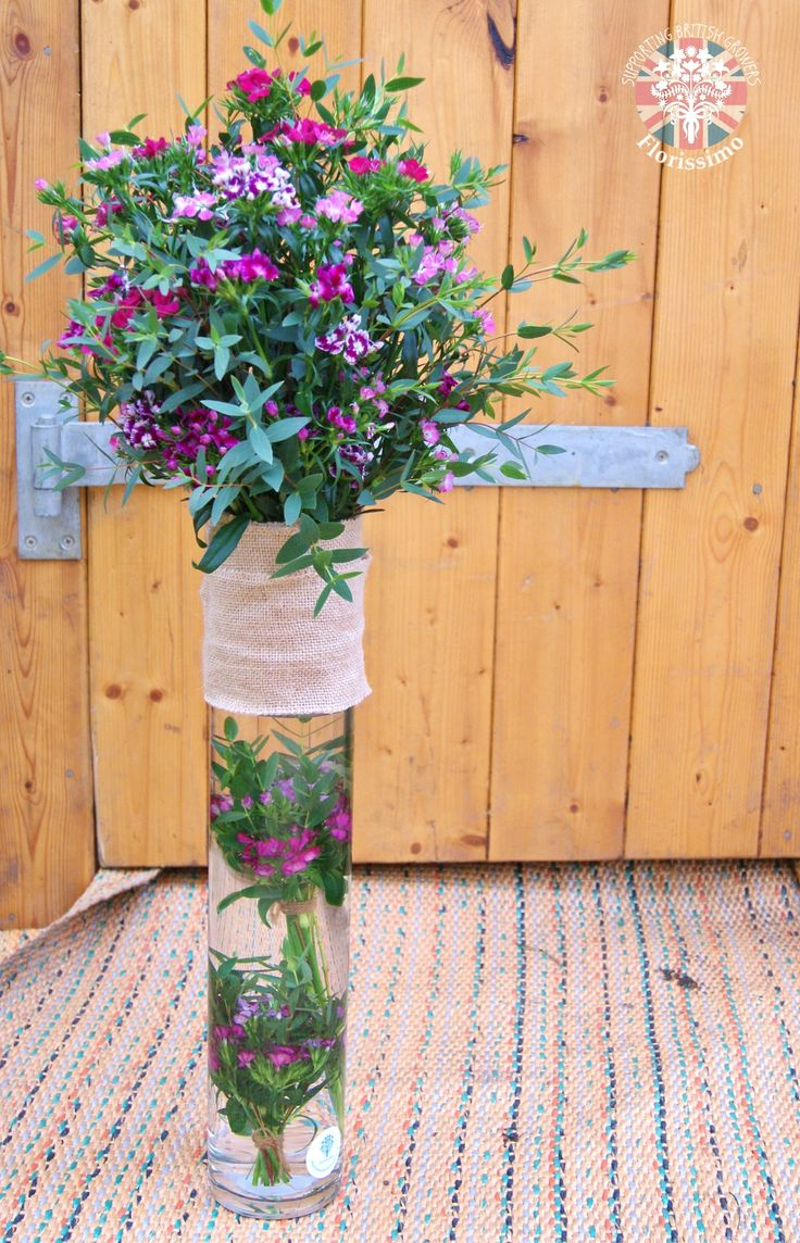 Sweet William | Florissimo, Shropshire - Beautiful flowers for weddings, events, businesses and homes. British-grown sweet william avail May-Dec
