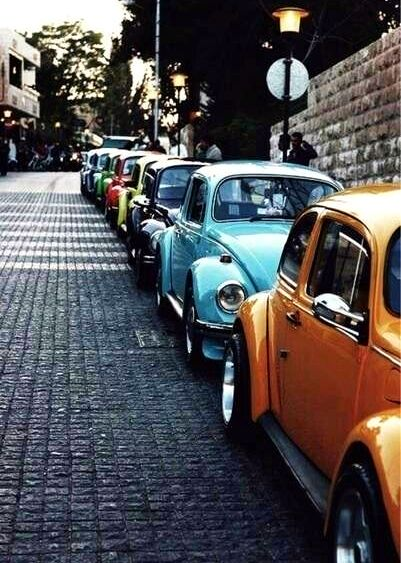 Classic VW - all in a row