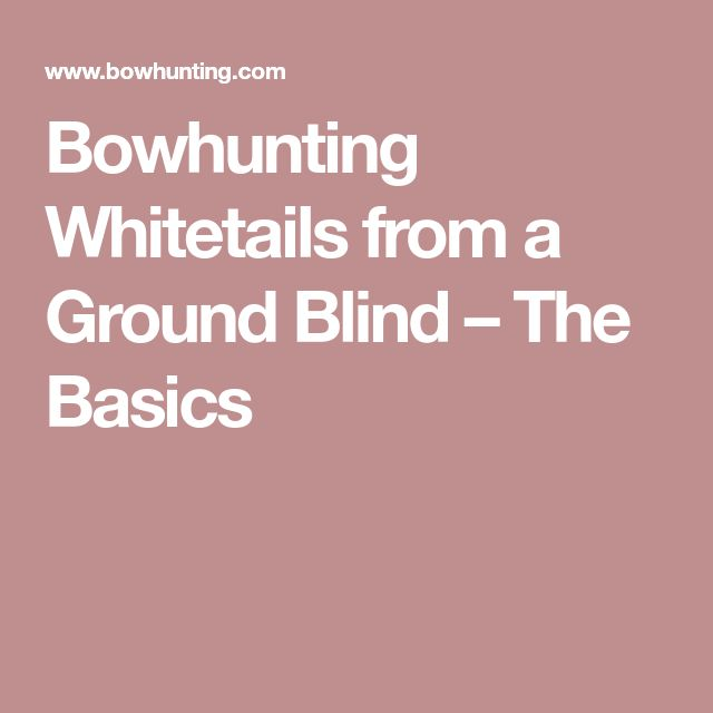 Bowhunting Whitetails from a Ground Blind – The Basics