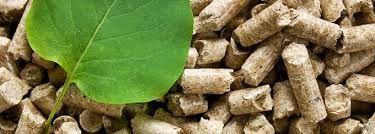 Energía renovable: -Biomasa, tratamiento de residuos orgánicos o cultivos energéticos para obtener combustible.