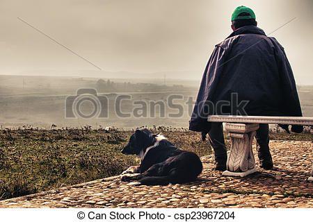 Stock de fotos pastor, Sheepdog- - Imagenes almacenadas, imágenes, fotografias libres de derechos, inventario de fotografo, inventario de fotografos, retrato, retratos, grafico, graficos
