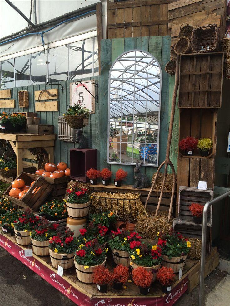 Autumn tub and basket display. Squires Garden Centre, Badshot Lea - November 2016