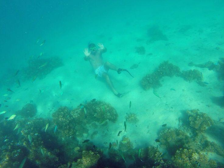 Liam underwater, photo courtesy of Maisie