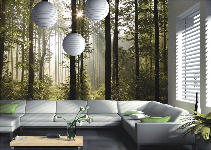 wall mural wallpaper | Wall mural wallpaper nature forest tree light show photo 360 cm x 254 ...