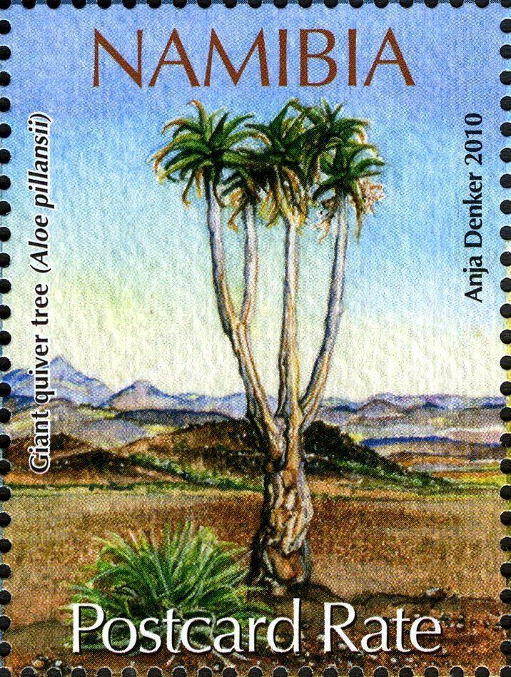 Sello Giant Quiver Tree Namibia Endangered Species Of Namibia Mi Na 1329 Sg Na 1137 Wad Na004 10 Namibia Stamp Endangered Species