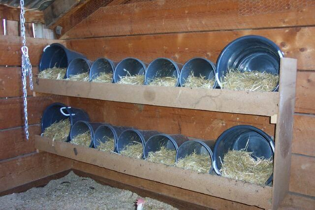 chicken roosting boxes | http://www.backyardchickens.com/forum/uploads/54003_nestingboxes1.jpg