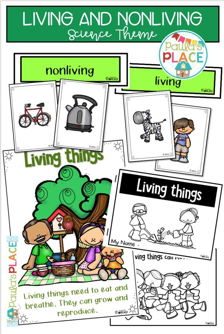 As Young Learners The Difference Between Living And Non Living Can Be Hard To Determine This Pack Pro Living And Nonliving Teaching Activities Science Biology [ 1100 x 736 Pixel ]
