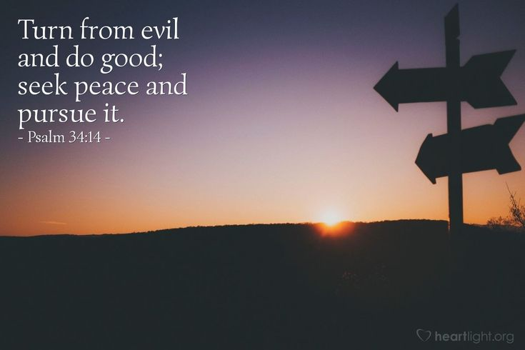 Psalm 34:14—Turn from evil and do good; seek peace and pursue it.