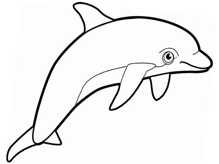 Dibujo de delfines para imprimir y colorear (11 de 12