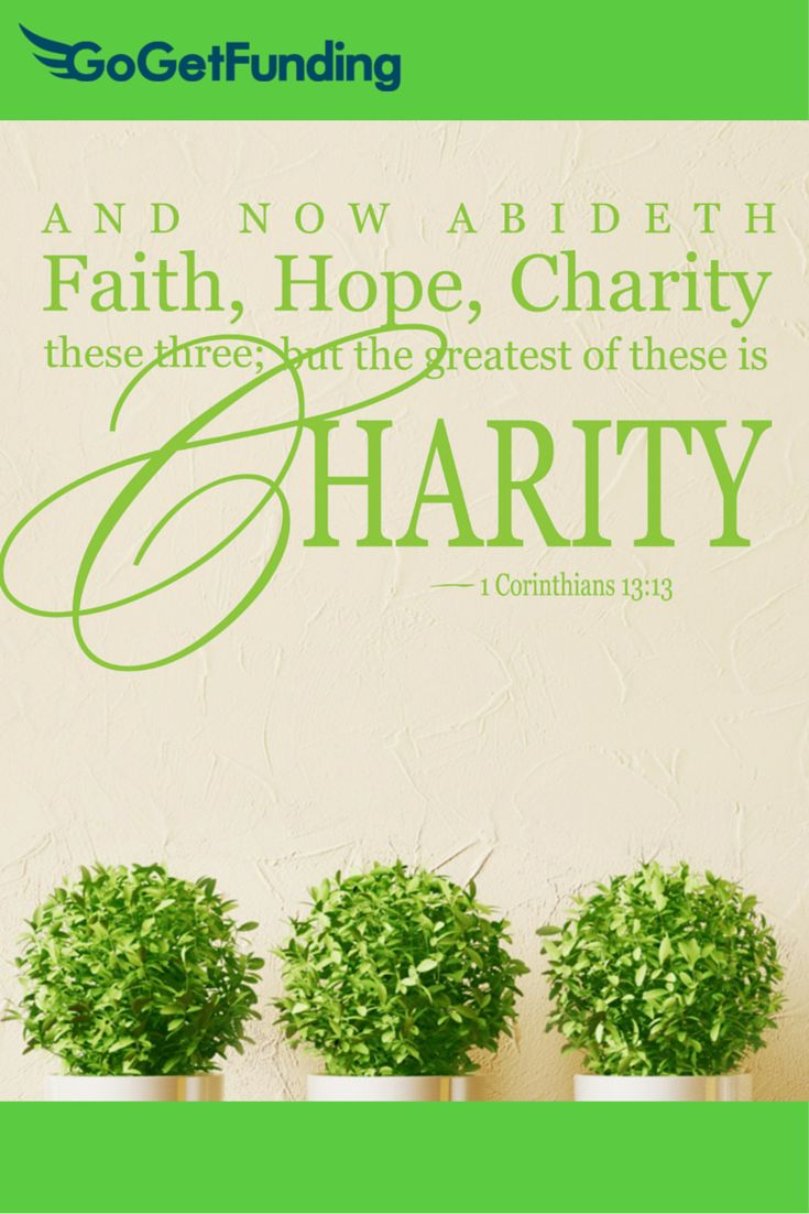 Fundraising Quotes 96 Best Goget Fundraising Quotes Images On Pinterest  Fundraisers