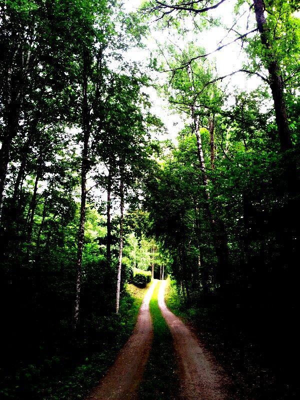 Finding the way back home... Kvänarp, Småland, Sweden.