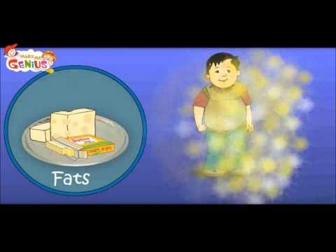 Visit http://www.makemegenius.com for free educational videos for kids. Understanding of Food-Pyramid,lesson for children.