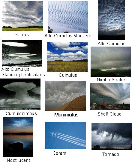Different Types of Clouds I need to memorize so I stop taking pictures to send to my bro asking what kind they are.