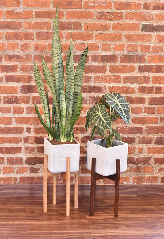 impressive design modern succulent planter. Modern Planter Stand with Cement Pot  Mid Century Wood pots and century