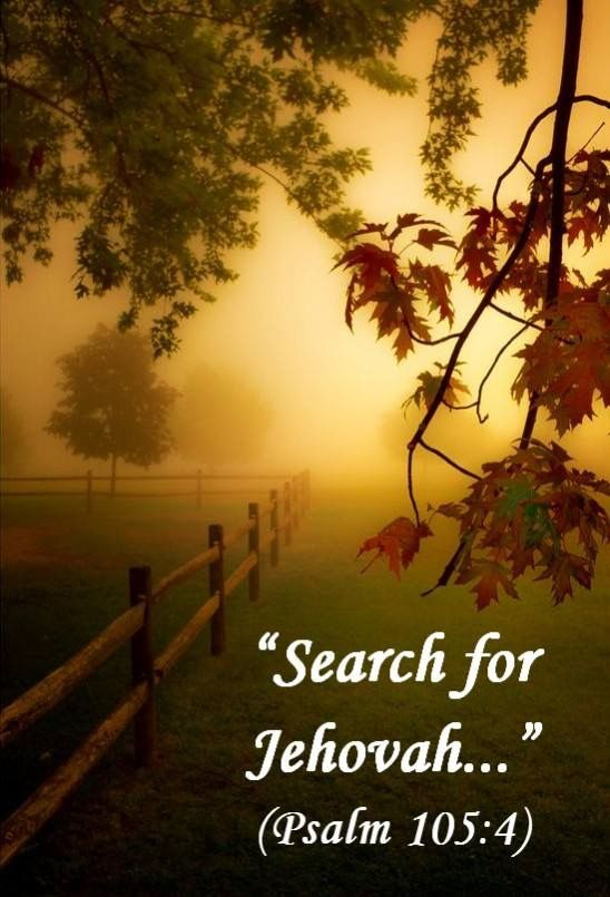 New World Translation Ps 105:4 Search for Jehovah and his strength. Seek his face constantly.