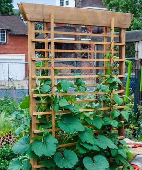 17 best images about vertical vegetable garden on for Vertical veggie garden ideas