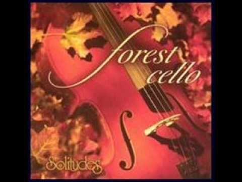 Dan Gibson Solitudes Forest Cello 02 Cool Forest Rain