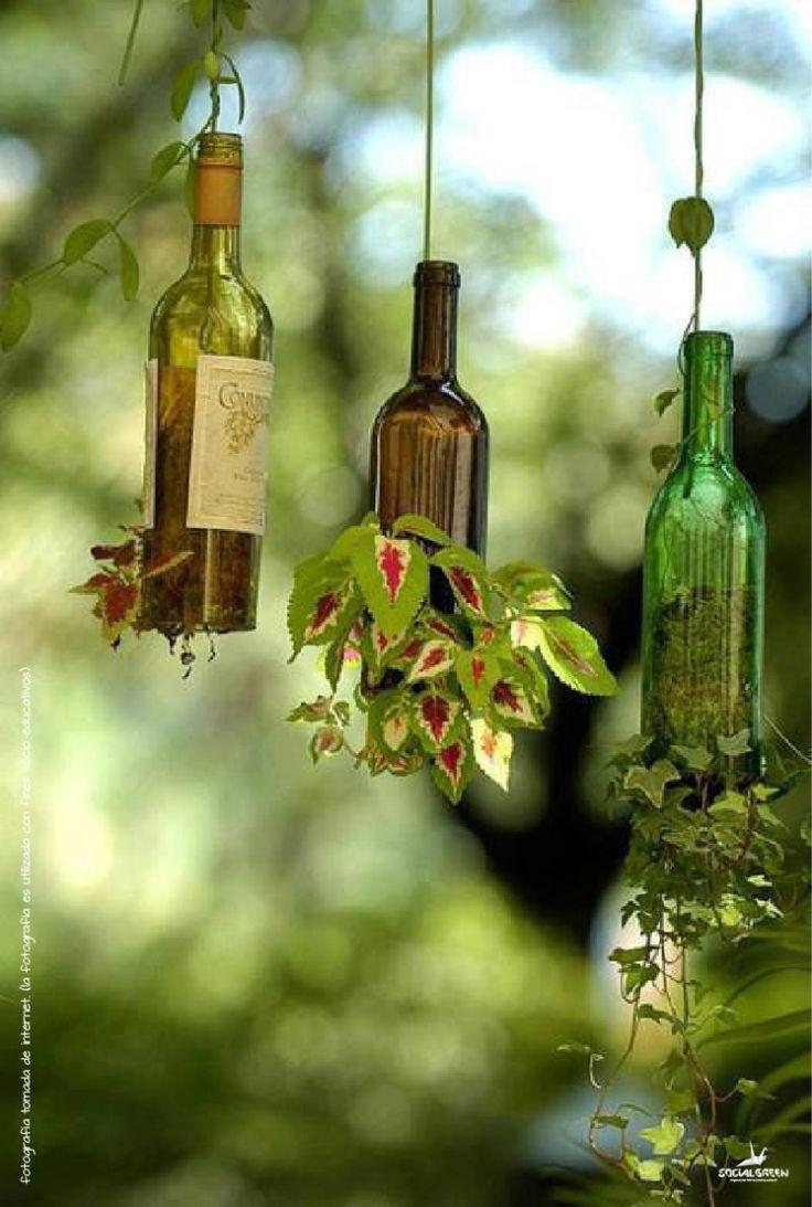 2. Pendure a garrafa: Uma ótima opção é suspender a garrafa fixando-a no teto com um cabo de aço ou corda; faça uma abertura na lateral para colocar a planta. Para colocá-las na parede utilize uma chapa de madeira e uma abraçadeira, lembre de considerar a distância da abraçadeira para que a garrafa fique reta.