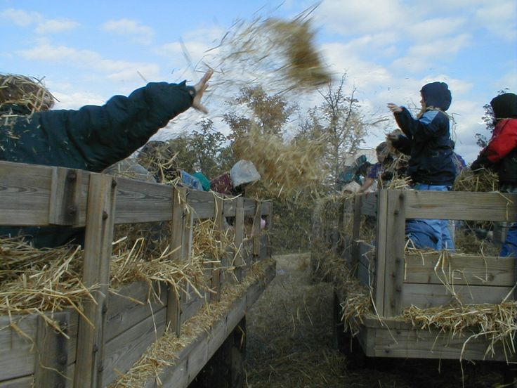 Start the evening off with a hayride through the orchard on the way to your private bonfire site.